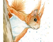 "Red Squirrel Watercolor Painting Art Print, Wall Decor sizes 5""x7"", 8""x10"", 11""x14"""