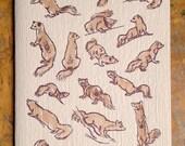 weazle birthday letterpress card ermine mink ferret SQUEEZLE!