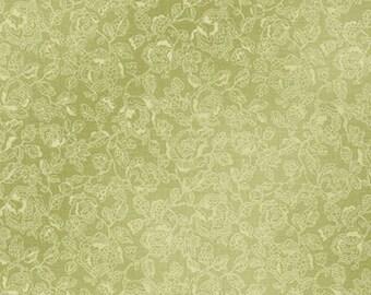 Green Blender Emma 2 Fabric - Robert Kaufman - 6726-43