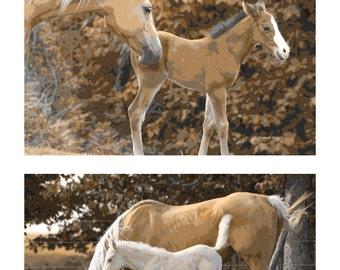 Palomino Horse Art, Southwestern Sepia, Farmhouse Ranch, Home Decor, Farm Animal,  Sepia Brown White, Wall Hanging, Giclee Print, 8 x 10