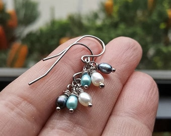 Lilliana Freshwater Pearl Stainless Steel Silver Earrings