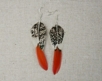 Orange feather earrings - Feather earrings - Golden Pheasant feather earrings- Pheasant feather jewellery - Orange feather jewelry