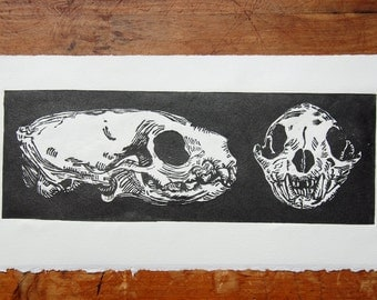 Mongoose Skulls