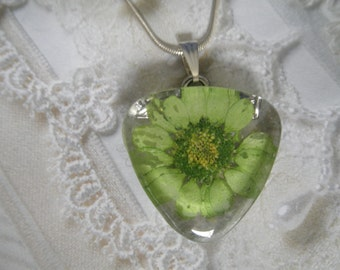 Lime Green Daisy Pressed Flower Glass Triangle Pendant-April's Birth Flower-Captured Childhood Memories-Symbolizes Loyal Love-Nature's Art
