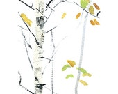about birch, set of watercolor postcards