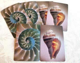 6 Sea Shell Vintage Playing Cards, 3 of Each, Hallmark Sea Treasures