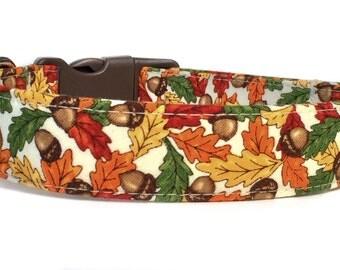 Fall Dog Collar / Thanksgiving Dog Collar / Fall Leaves Dog Collar / Autumn Dog Collar / Orange Brown Dog Collar / Acorn Dog Collar