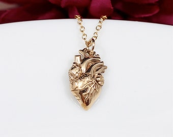 Gold Anatomical Heart Necklace - Realistic Heart Necklace in Bronze on a 14k Gold Filled Chain