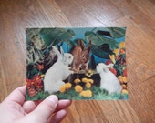 Vintage 3D Postcard Woodland Rabbits - 1960s / Retro Kitsch Forest Scene with Bunnies, Easter Gift, Scrapbooking Ephemera Printed in Japan