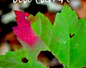 digital download nature photography: kissed by autumn, autumn home decor, autumn leaves, typography art, fall leaf photo, autumn photography