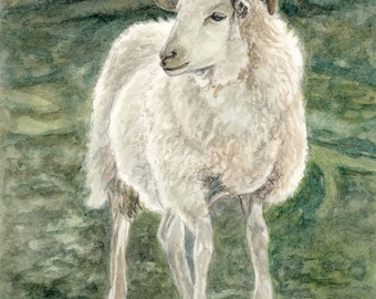 Farm Animal Art, Sheep Art Print, Sheep Watercolor Art, Farmyard Art, Farm Art Print, Nursery Art, Home Decor Wall Art by P. Tarlow
