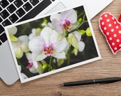 White Orchid Photo Notecard, Orchid Stationary, Floral Card, Blank Greeting Card, Mothers Day Card, Gifts for her, Gifts under 25