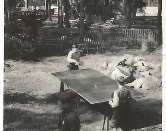 Ping Pong - Small Vintage Photo -  Table Tennis - Games - Snapshot - Boy Scouts - Found Vernacular Photo