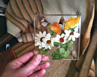 Preserved Nature Resin Wall Decor, Window Hanging. Butterfly, Pressed Flower Art.