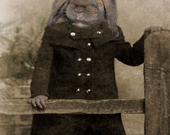 Phoebe, Vintage Rabbit Print, Anthropomorphic, Altered Photo, Wildlife Art Print, Whimsical Bunny Art, Digital Photo Collage, Weird Art