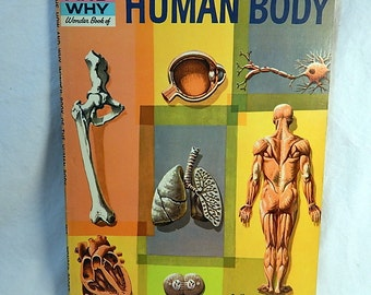 Human Body How and Why Wonder Book 1961 Vintage Children's Educational Book