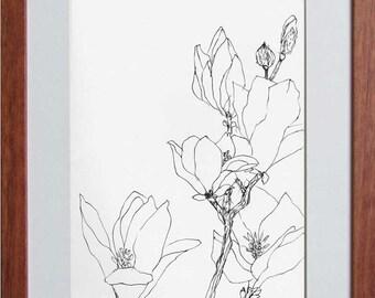 A Magnolia Branch II