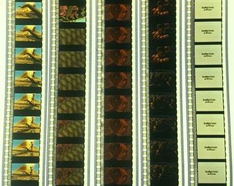"""35mm Movie Trailer Film Strips """"Antz"""" 5 Strips - Scrapbook - Bookmark #2"""