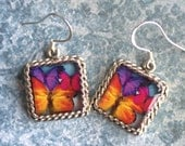 Butterfly earrings 3D Dimensional Square Silver orange purple pink