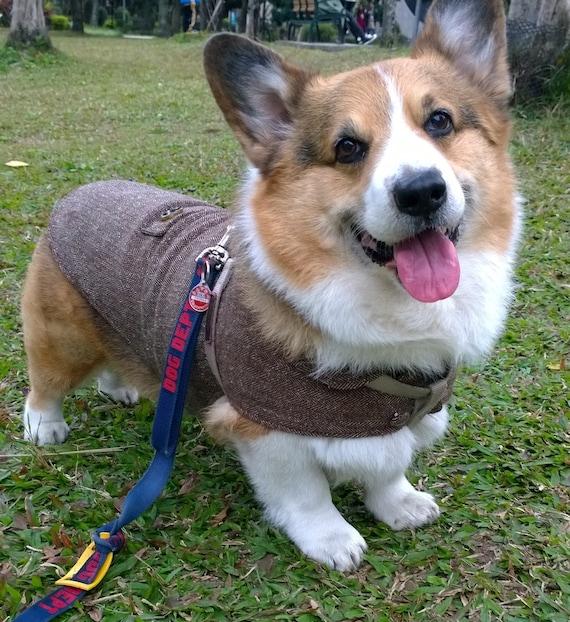 Corgi coat Herringbone tweed jacket for Welsh Corgi Long bodied Dog winter coat dark brown herringbone woolly coat with fleece ( LB-MM-CG )