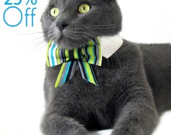 On Sale! Dog/Cat green & teal striped bow on a shirt style collar