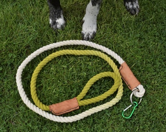 Dip Dyed Ombre Leash