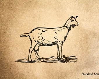 Goat Rubber Stamp - 2 x 2 inches