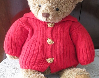 Meet Mary, made by Hallmark. A cuddly flopsy teddy bear with red sweater and cute bear buttons