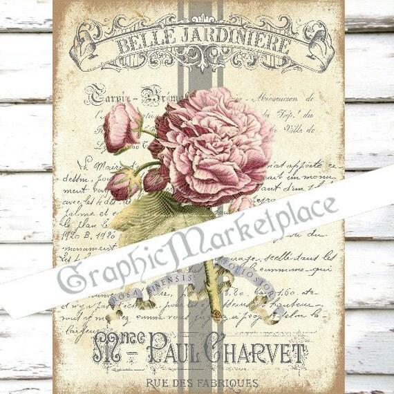 Foglio di shabby chic peonia fiori fleurs botanica belle for Fiori di stoffa shabby chic