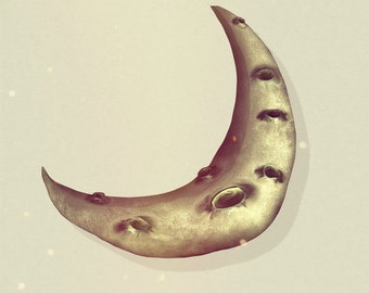 Crescent Moon Print