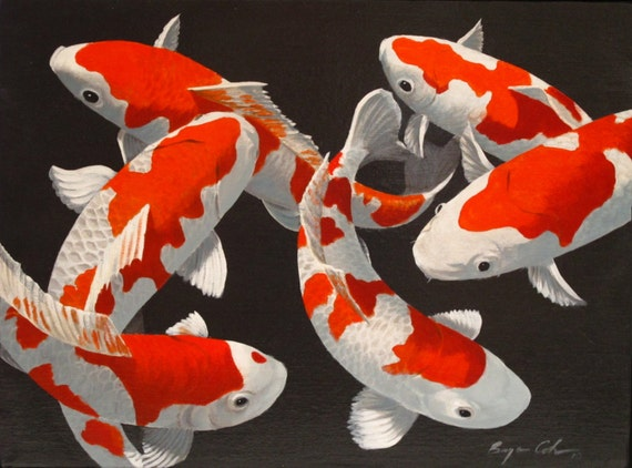 Red and white koi for Red and white koi