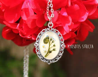 Field Forget-me-not (Myosotis Stricta)-Resin necklace-Real Flowers-Gift for Her