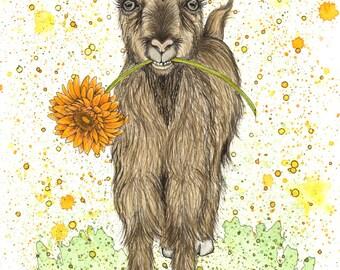 Goat Watercolor Print
