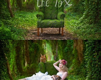 Mossy chair forest ivy vine garden background backdrop digital moss nature fairy fantasy whimsical photography newborn composite stock