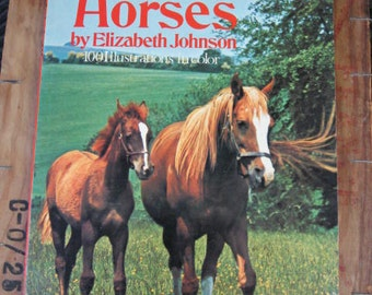 1970's Horse Picture Book All Color Book of Horses Elizabeth Johnson - Equestrian Pony Ponies Foals Animal Pics History Show Jumping Vintage