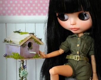 25% Discount Miniature Bird House