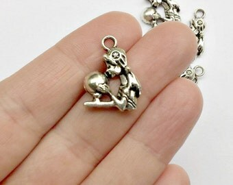 6 Fortune Teller Charms - Psychic - Charms - Pendants - #S0245