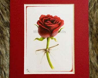 Scarlet Rose Print - HIGH QUALITY