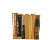 Tan Brown  Earth Tone  Decorative Books, Brown Vintage Books ,  Home Decor , Old Books , Vintage Photo Props , Table Setting , Wedding Decor