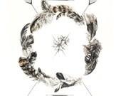 Dreamcatcher Wall Art - 11x14 geometric feather art print