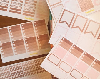 Complete Set- Rose Gold and Pink Collection Erin Condren planner stickers!