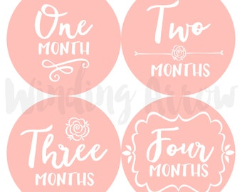 Baby Monthly Milestone Stickers Baby Girl Month by Month Sticker Baby Shower Gift First Year Belly Stickers 12 Months Pink Flowers Rose Girl