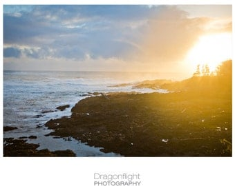 Pacific North West Wall Photography Print