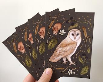 Barn owl postcard pack