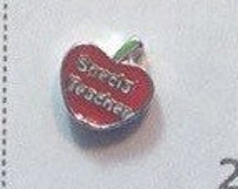 Special teacher Floating charm