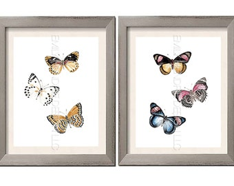 Butterfly Moth Scientific Study Watercolor Art Print