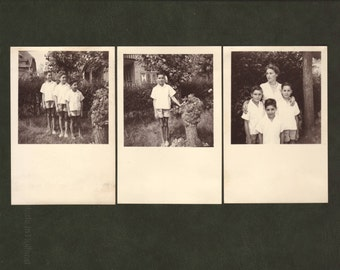 Three boys and their mother - Set of 3 - Children, vintage photo, picture, snapshot, 1955 - Collectible vernacular photographs (B458)