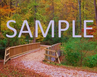 Fall leaves and bridge photography print