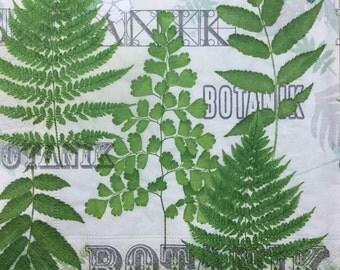 "SALE! 3 Botanic Garden Fern Napkins, 13""x13"""