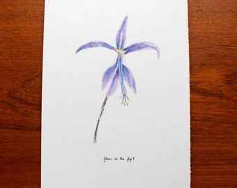 Fleur De Lis Print